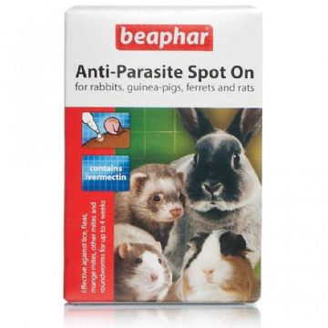 Beaphar Anti Parasite Spot On Rabbits Guinea Pigs